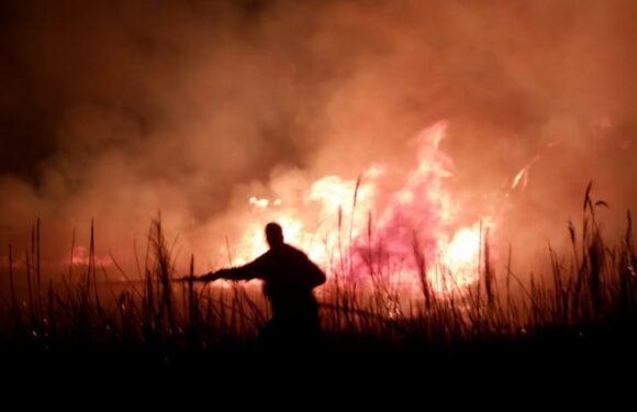 Ljubuški vatrogasci proteklog vikenda imali pune ruke posla
