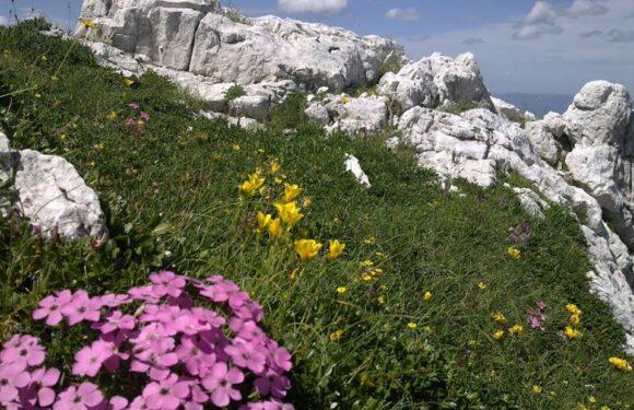 HERCEGOVINA-turistički raj koji nadahnjuje